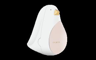PUPA BIRD 2 - 001