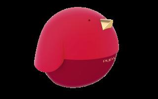 PUPA BIRD 1 - 002