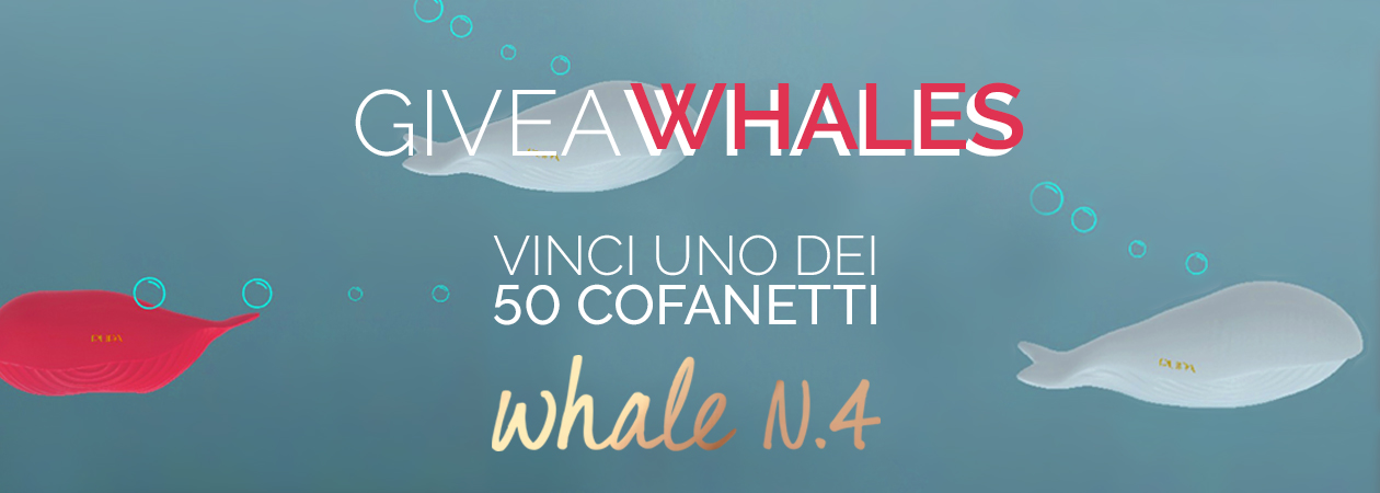 GiveAWhales - PUPA Milano